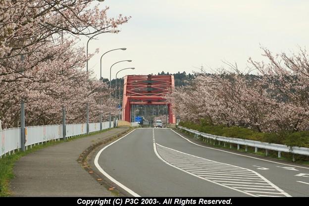 橋はピンクではなく朱色