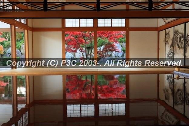Photos: HP3C_2942