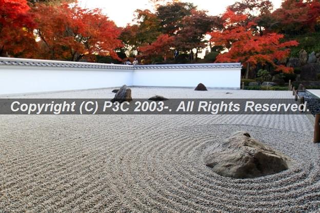 HP3C_3000