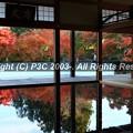 Photos: HP3C_2959