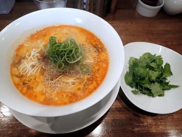 担担麺+パクチー@鳴龍・豊島区新大塚
