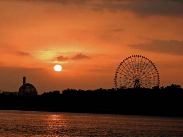 旧江戸川からの夕日