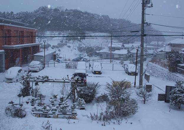 小雪の朝 H30,1,26