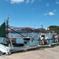 写真: 港の風景(14)H30,3,23