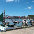 Photos: 港の風景(14)H30,3,23