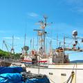 写真: 休業船 H30,7,10