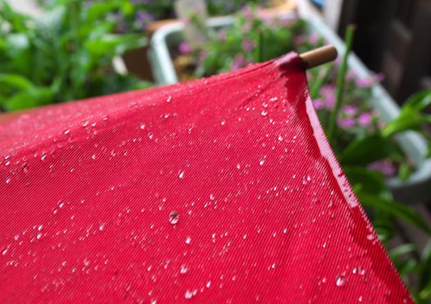 雨粒たち H30,9,15