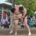 五箇地区相撲大会(5)舜(1)H30,11,3