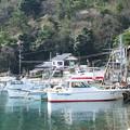 Photos: 港の風景(34)