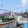 Photos: 港の風景(36) カニ船と巾着網本船