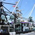 Photos: 港の風景(39) 巾着網本船(3)