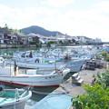 Photos: 港の風景(40) 八尾川河口風景