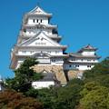 Photos: 姫路城(1)