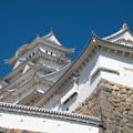 Photos: 姫路城(2)
