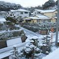 初雪(2)