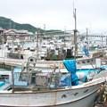 Photos: 天神さん前のイカ釣り船(1)