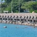 Photos: 都万湾、屋那の船小屋(3)