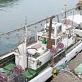 Photos: イカ釣り船