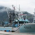 Photos: 西郷港の朝(3)