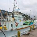 Photos: 西郷港の朝(4)