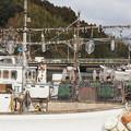 Photos: 西郷港の風景(2)