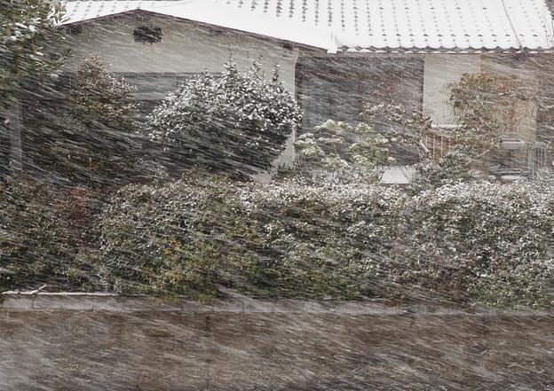 吹雪(1)自宅二階から