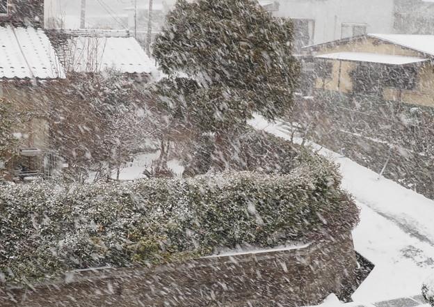 吹雪(2)自宅二階から