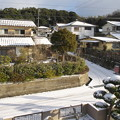 Photos: 雪の朝(1)