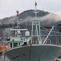 Photos: 西郷港の朝(5)