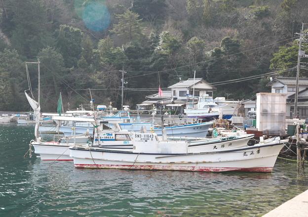 西郷港の朝(31)愛宕山ふもとの眺め