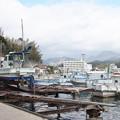 西郷港の朝(32)愛宕山ふもとの眺め