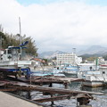 Photos: 西郷港の朝(32)愛宕山ふもとの眺め