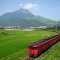 写真: 九州探訪 016