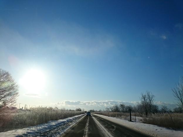 写真: 2月8日(木)