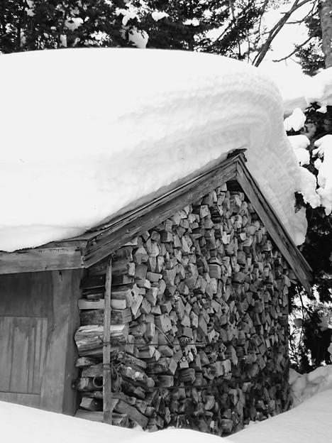 写真: 爺ちゃんちは雪多いなぁ