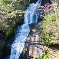 写真: 三段の滝2