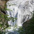 写真: 白扇の滝2