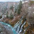 写真: 白ひげの滝2