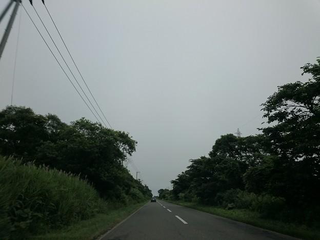 Photos: 7月21日(火)
