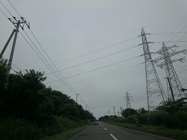Photos: 7月31日(金)