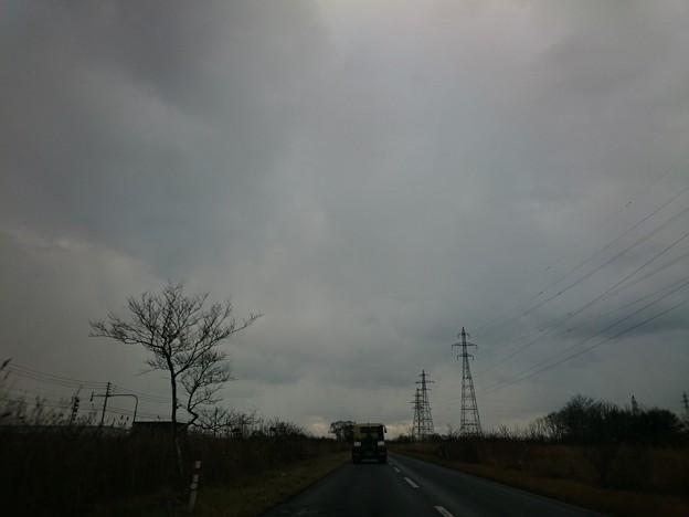 Photos: 11月24日(火)