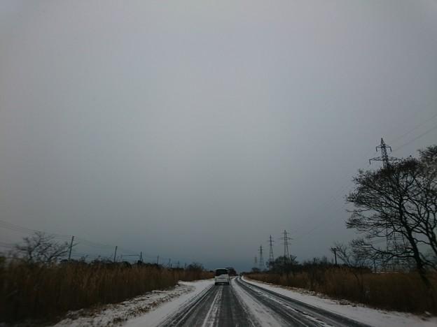 Photos: 1月7日(木)
