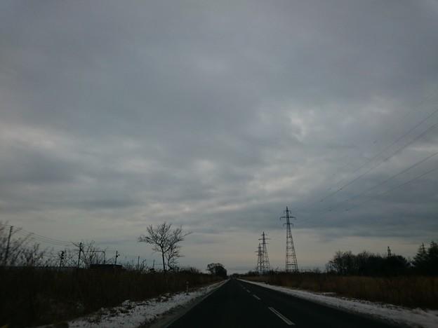 Photos: 1月12日(火)