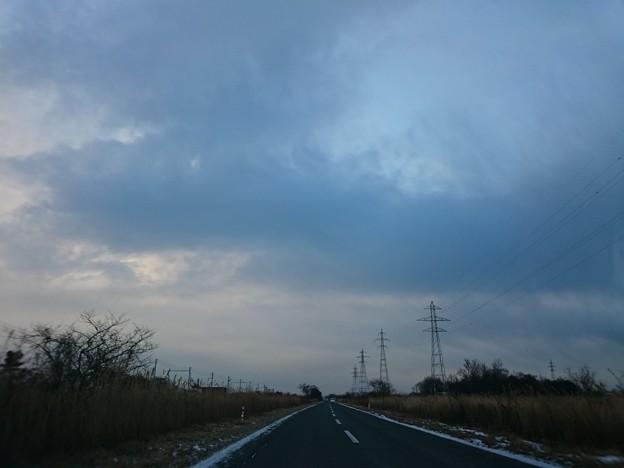 Photos: 1月19日(火)