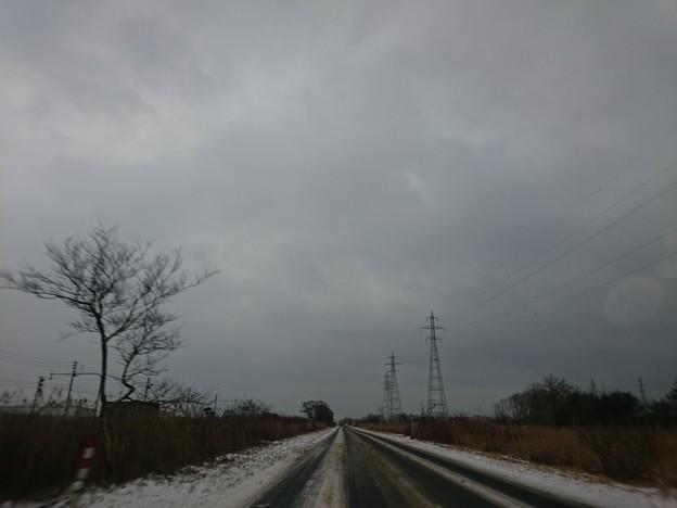 Photos: 1月21日(木)