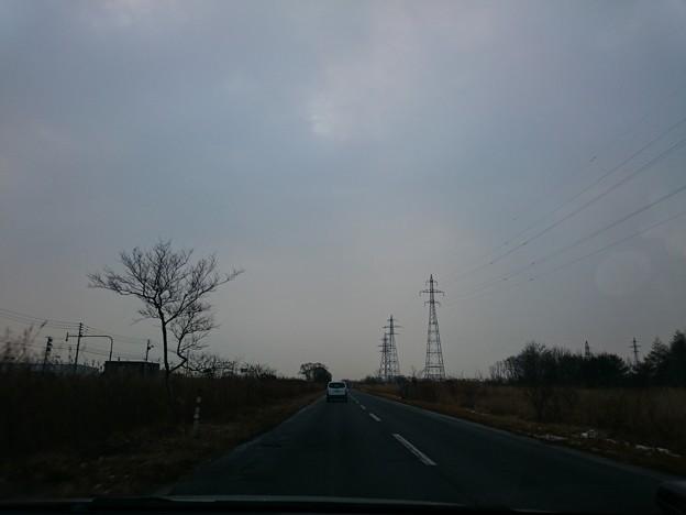 Photos: 1月22日(金)