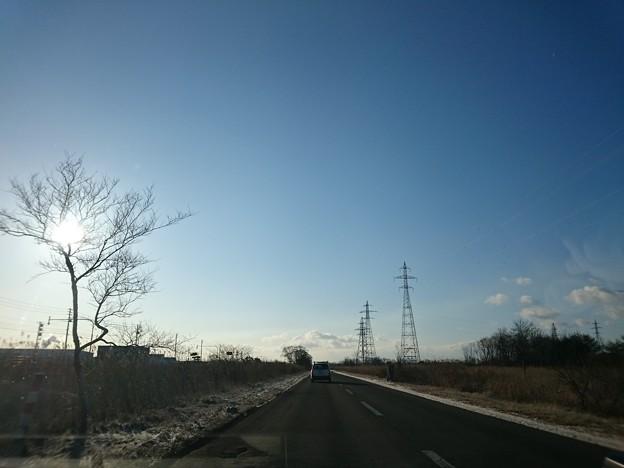 Photos: 2月25日(木)