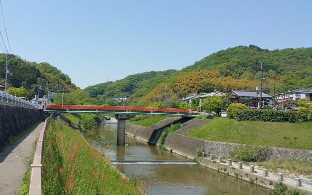 0502竜田川4