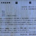 0720帝釈峡1雄橋1