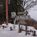 写真: 0221金剛山1
